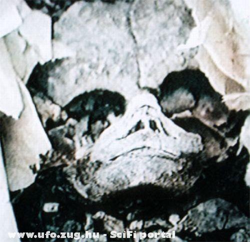 Egy ufonauta koponyája