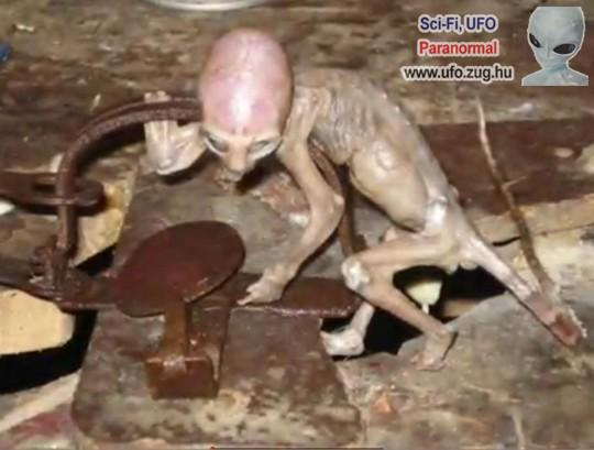 Csapdában az UFO