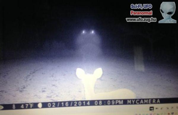 Furcsa fények az éjszakában