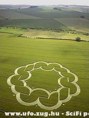 Virág alakú gabonarajz