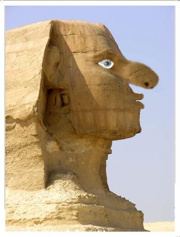 Sfinx javitott