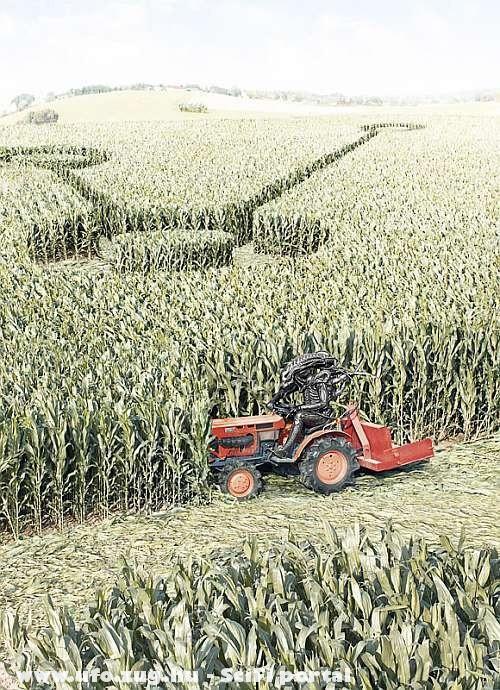 Alien aratás közben