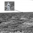 Idegen életforma a Marson
